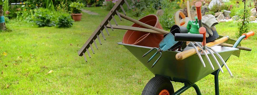 univers de jardinage d'été