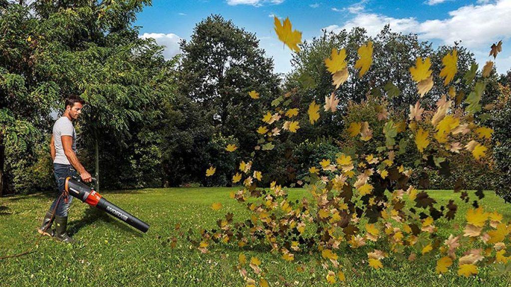 souffleur de feuilles avis