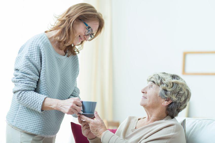 maintient domicile personnes agees
